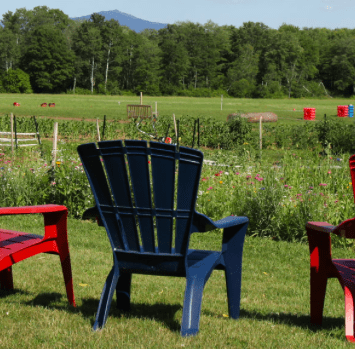 Chairs at Coopers Crossroads