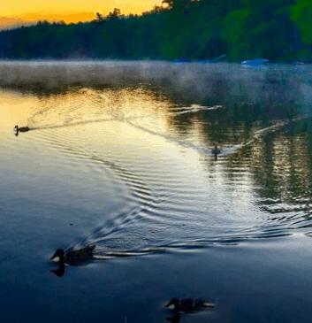 The lake at pilgrim pines camp