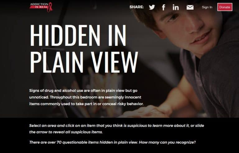 screenshot of hidden in plain view website